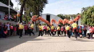 Foto da apresentação da dança do dragão. Sete pessoas segurando um dragão colorido e andando.